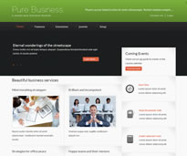Pure Business theme